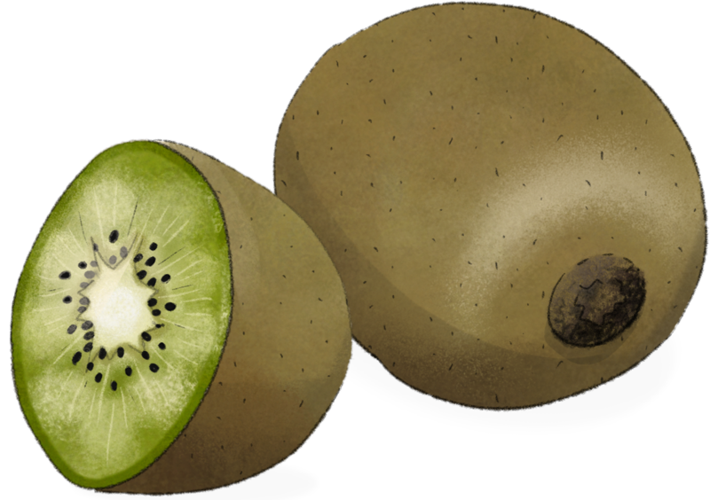 Illustration Kiwi